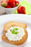 Rusk with cream cheese. Rusk (Zwieback) with cream cheese closeup Royalty Free Stock Image