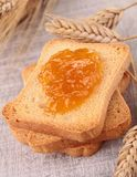 Rusk with jam. And wheat Royalty Free Stock Image