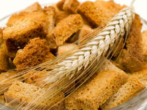 Rusk and wheat Royalty Free Stock Image