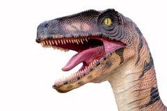 ruskiga rovdjurs- predatory skarpa tänder för dinosaurhuvudmun Fotografering för Bildbyråer