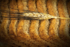 Rusks of Wholemeal Flour with Ear of Wheat Royalty Free Stock Images