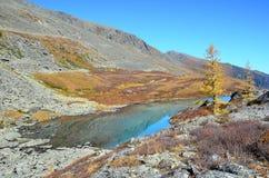 Rusland, Altai-bergen, meer Acchan Akchan in september in zonnig weer Stock Afbeeldingen