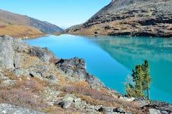 Rusland, Altai-bergen, meer Acchan Akchan in september in zonnig weer Royalty-vrije Stock Fotografie