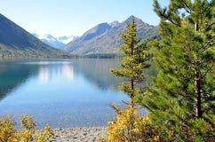 Rusland, Altai-grondgebied, ust-Koksinsky district, het lagere Multinskoye-meer in september Stock Foto's
