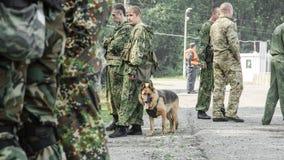 Rusland, Belgorod, 25 Juli, 2016: oefeningen van speciale korpsen storm de gevangen basis op diverse manieren stock afbeeldingen