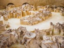 Rusland, Bryansk-gebied, Yudinovo Paleolitisch museum - 19 April, 2019: Excursie stock afbeeldingen