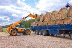 RUSLAND, 6 BRYANSK-SEPTEMBER: Landbouwbedrijfverrichtingen op 6,2014 September in Bryanskaya Oblast, Rusland Stock Foto