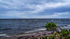 Rusland De zomer van 2016 Onweer in St. Petersburg, op de Golf van Finland Royalty-vrije Stock Foto