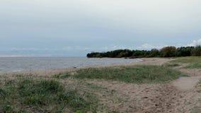 Rusland Heilige-Petersburg Kronshtadt De kust van de Golf van Finland dichtbij het Fort ` SHANETS ` stock video