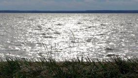 Rusland Heilige-Petersburg Kronshtadt De kust van de Golf van Finland dichtbij het Fort ` SHANETS ` stock videobeelden