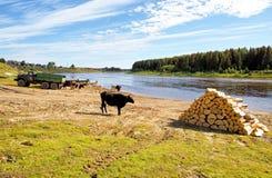 Rusland, het circumpolaire Oeralgebergte Het dorp van Mansi-volkeren op de banken van de rivier royalty-vrije stock foto's