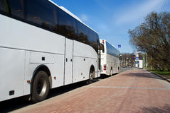 Rusland. St. Petersburg. Parkeren van bussen. stock fotografie