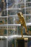 Rusland, St Petersburg, Peterhof Stock Foto's