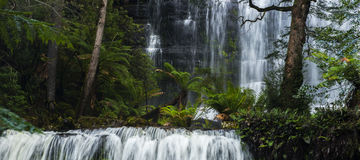 Russel Falls in Mount Field National Park. Royalty Free Stock Image