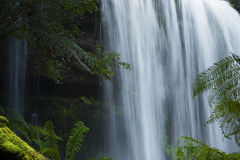 Russel Falls in Mount Field National Park. Stock Image
