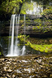 Russel Falls, Tasmania. Russel Falls waterfall in the Mt Field National Park, Tasmania, Australia stock photo