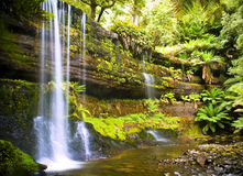 Russel Falls, Tasmania. Russel Falls waterfall in the Mt Field National Park, Tasmania, Australia stock image