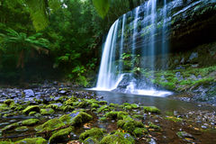 Russell falls Stock Photography