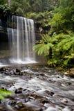 Russell Falls Imagens de Stock