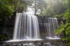 Russell Falls Fotografia de Stock