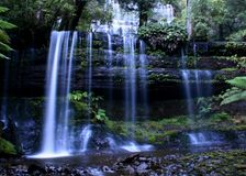Russell Falls. 