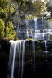 Russell Falls i monteringsfältnationalparken, Tasmanien Royaltyfri Bild