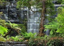 Russell Falls, Mount Field National Park, Tasmania Royalty Free Stock Photos