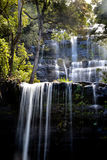 Russell Falls in Mount Field National Park, Tasmania. Waterfall in Mount Field National Park Royalty Free Stock Image