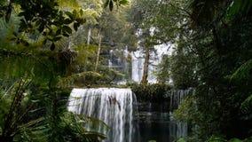 Russell falls. In mt field national park, tasmania stock video footage