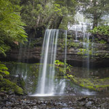 Russell Falls, Nationalpark des Berg-Feldes, Tasmanien, Australien Lizenzfreie Stockfotografie