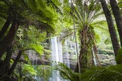 Russell Falls, parc national de gisement de bâti, Tasmanie, Australie photo libre de droits