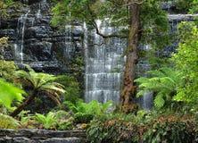 Russell Falls, parque nacional do campo da montagem, Tasmânia Fotos de Stock Royalty Free