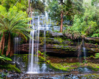 The Russell Falls. Tasmania, Australia. royalty free stock photo
