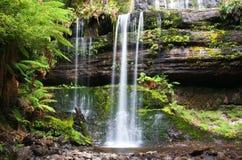 Russell Falls in Tasmanige Royalty-vrije Stock Afbeelding