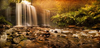 Russell Falls waterfall. A beautifully tranquil image of Russell Falls waterfall, Mount Field National Park, Tasmania, Australia Stock Photo