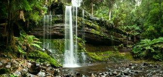 Russell Falls, zet het Nationale Park van het Gebied op stock afbeelding