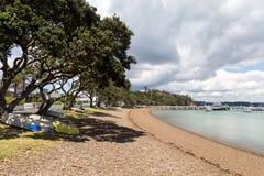 Russell i Nya Zeeland Royaltyfria Bilder