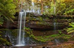 RussellFalls Tasmanien Lizenzfreies Stockfoto