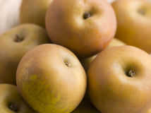 Russet Apples Royalty Free Stock Photography