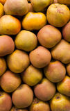 Russet apples Stock Photography