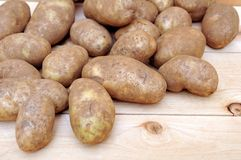 Russet potato Royalty Free Stock Photos