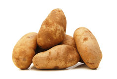 A russet potato Royalty Free Stock Images