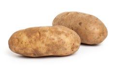 Russet Potato. With white background stock photo