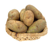 Russet potatoes in old basket Royalty Free Stock Photography