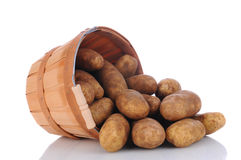 Russet Potatoes spill from Basket Stock Photos