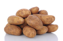 Russet Potatoes on White Royalty Free Stock Images