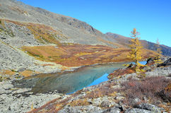 Russia, Altai mountains, lake Acchan Akchan in september in sunny weather Stock Images