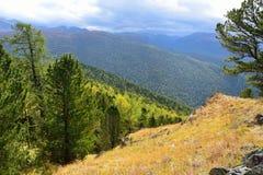 Russia, Altai mountains, nature near Maralnik village Royalty Free Stock Photos