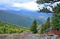 Russia, Altai mountains, nature near Maralnik village Stock Photography