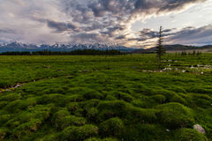 Russia, Altai mountains, Severo-Chui Range Stock Photography
